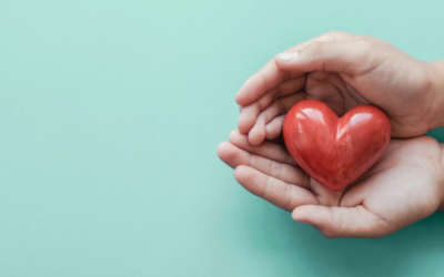 'Tis the Season for Charitable Giving
